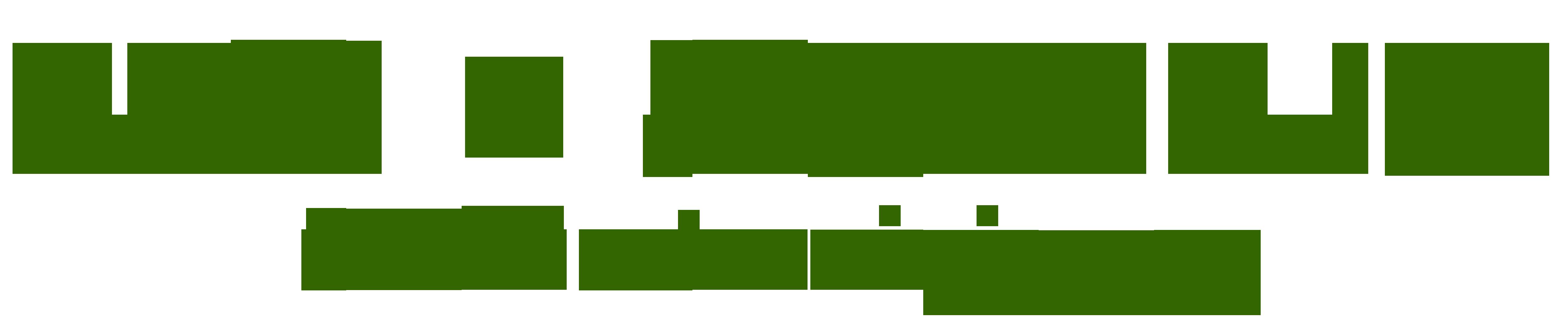 REIN + SAUBER LTD